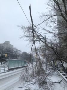 December 2013 - Ice Storm